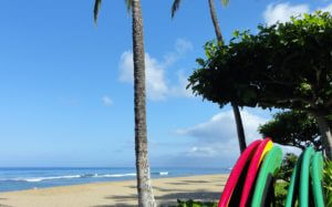 Why Vacation in Hawaii ?